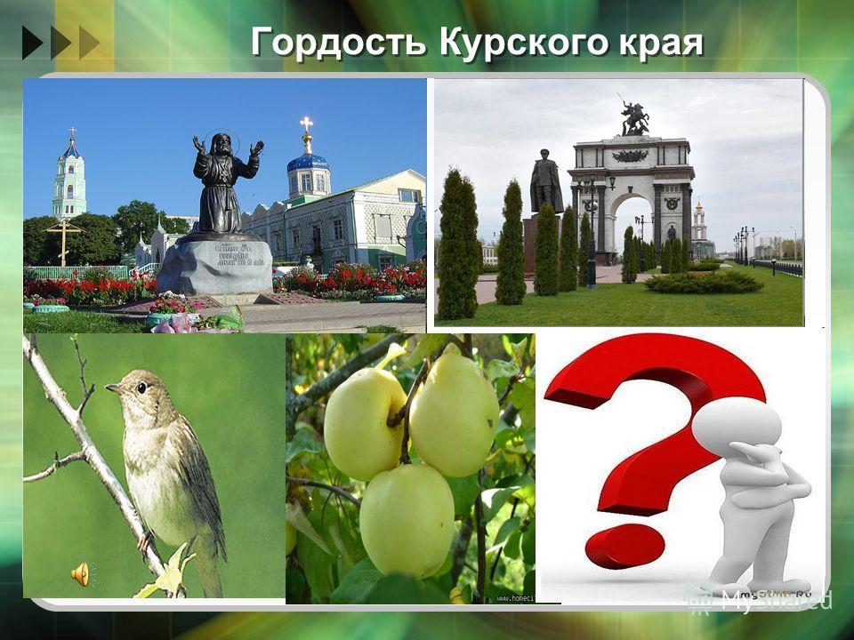 Гордость Курского края
