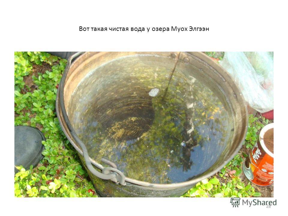 28 Вот такая чистая вода у озера Муох Элгээн