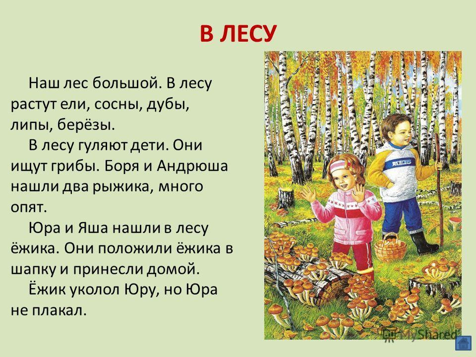 В ЛЕСУ Наш лес большой. В лесу растут ели, сосны, дубы, липы, берёзы. В лесу гуляют дети. Они ищут грибы. Боря и Андрюша нашли два рыжика, много опят. Юра и Яша нашли в лесу ёжика. Они положили ёжика в шапку и принесли домой. Ёжик уколол Юру, но Юра