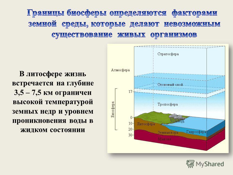 В литосфере жизнь встречается на глубине 3,5 – 7,5 км ограничен высокой температурой земных недр и уровнем проникновения воды в жидком состоянии