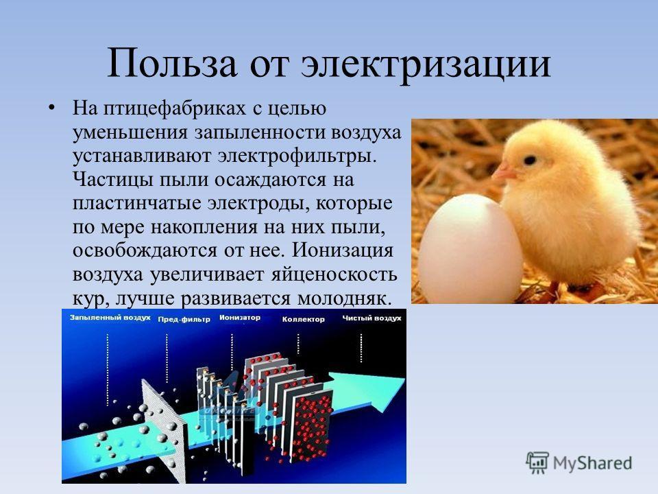 Польза от электризации На птицефабриках с целью уменьшения запыленности воздуха устанавливают электрофильтры. Частицы пыли осаждаются на пластинчатые электроды, которые по мере накопления на них пыли, освобождаются от нее. Ионизация воздуха увеличива