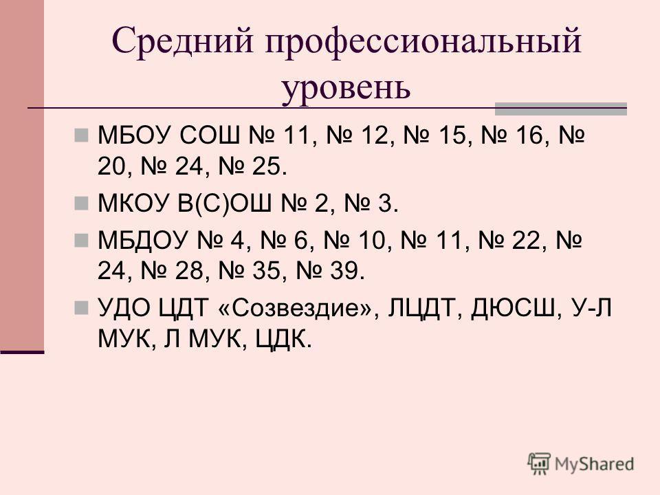 Средний профессиональный уровень МБОУ СОШ 11, 12, 15, 16, 20, 24, 25. МКОУ В(С)ОШ 2, 3. МБДОУ 4, 6, 10, 11, 22, 24, 28, 35, 39. УДО ЦДТ «Созвездие», ЛЦДТ, ДЮСШ, У-Л МУК, Л МУК, ЦДК.