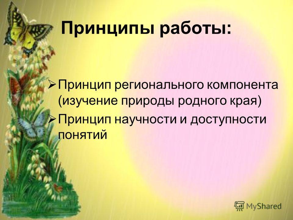 Принципы работы: Принцип регионального компонента (изучение природы родного края) Принцип научности и доступности понятий
