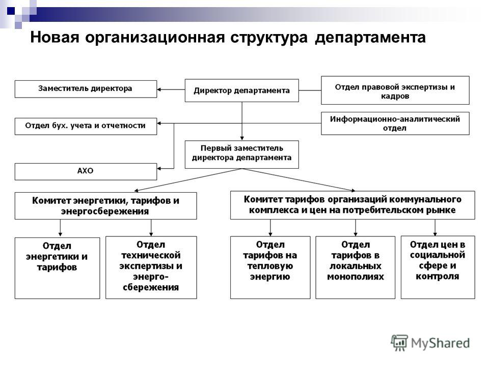 Новая организационная структура департамента