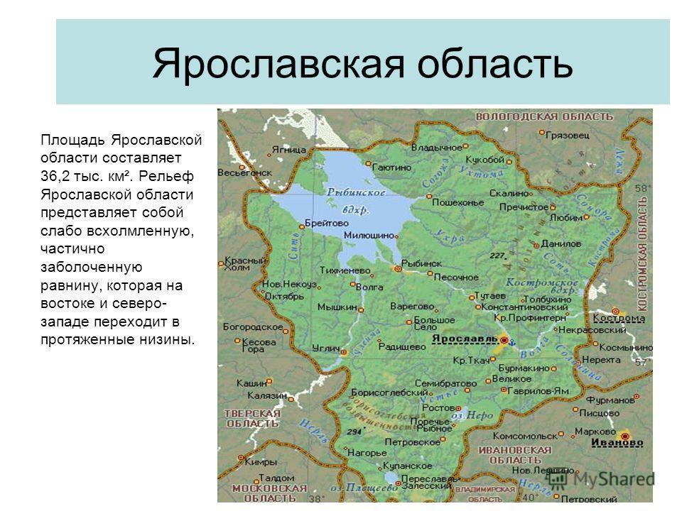 Ярославская область Площадь