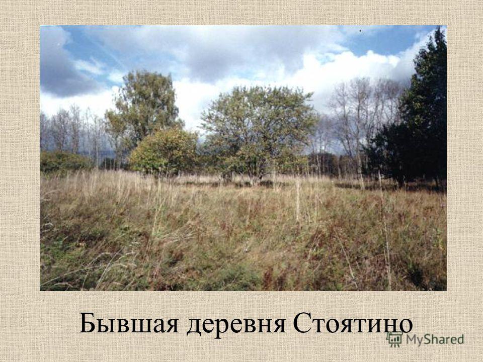Бывшая деревня Стоятино