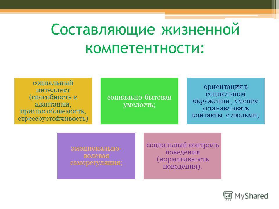 Составляющие жизненной компетентности: социальный интеллект (способность к адаптации, приспособляемость, стрессоустойчивость) социально-бытовая умелость; ориентация в социальном окружении, умение устанавливать контакты с людьми; эмоционально- волевая
