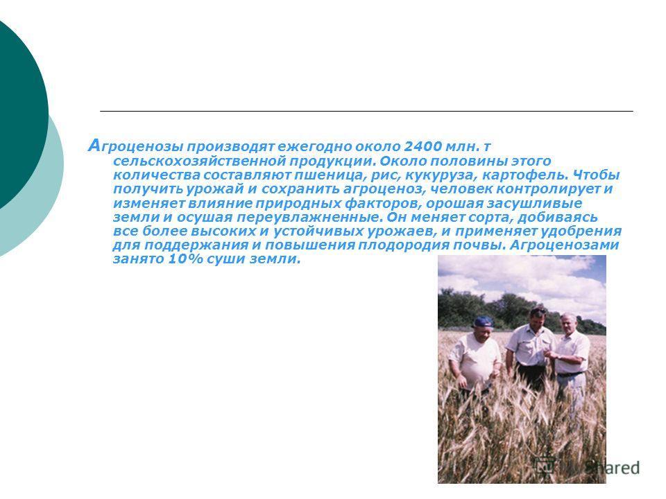 А гроценозы производят ежегодно около 2400 млн. т сельскохозяйственной продукции. Около половины этого количества составляют пшеница, рис, кукуруза, картофель. Чтобы получит ь урожай и сохранить агроценоз, человек контролирует и изменяет влияние прир