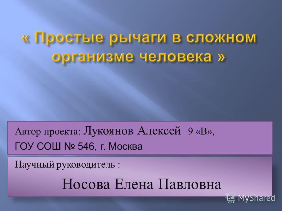 Научный руководитель : Носова Елена Павловна Автор проекта: Лукоянов Алексей 9 «В», ГОУ СОШ 546, г. Москва