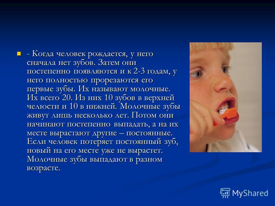 - Когда человек рождается, у него сначала нет зубов. Затем они постепенно появляются и к 2-3 годам, у него полностью прорезаются его первые зубы. Их называют молочные. Их всего 20. Из них 10 зубов в верхней челюсти и 10 в нижней. Молочные зубы живут