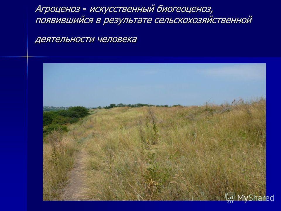 Агроценоз - искусственный биогеоценоз, появившийся в результате сельскохозяйственной деятельности человека