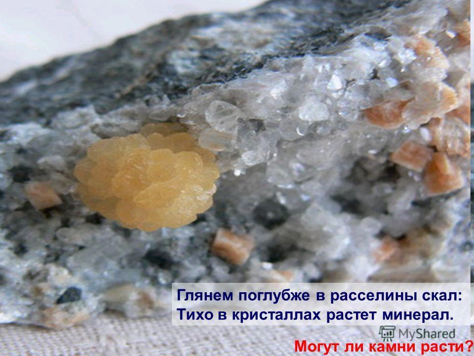 Глянем поглубже в расселины скал: Тихо в кристаллах растет минерал. Могут ли камни расти?