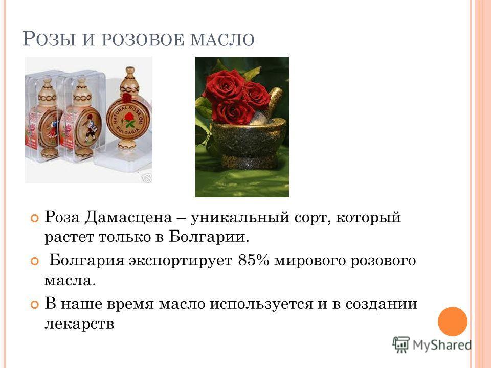 Р ОЗЫ И РОЗОВОЕ МАСЛО Роза Дамасцена – уникальный сорт, который растет только в Болгарии. Болгария экспортирует 85% мирового розового масла. В наше время масло используется и в создании лекарств