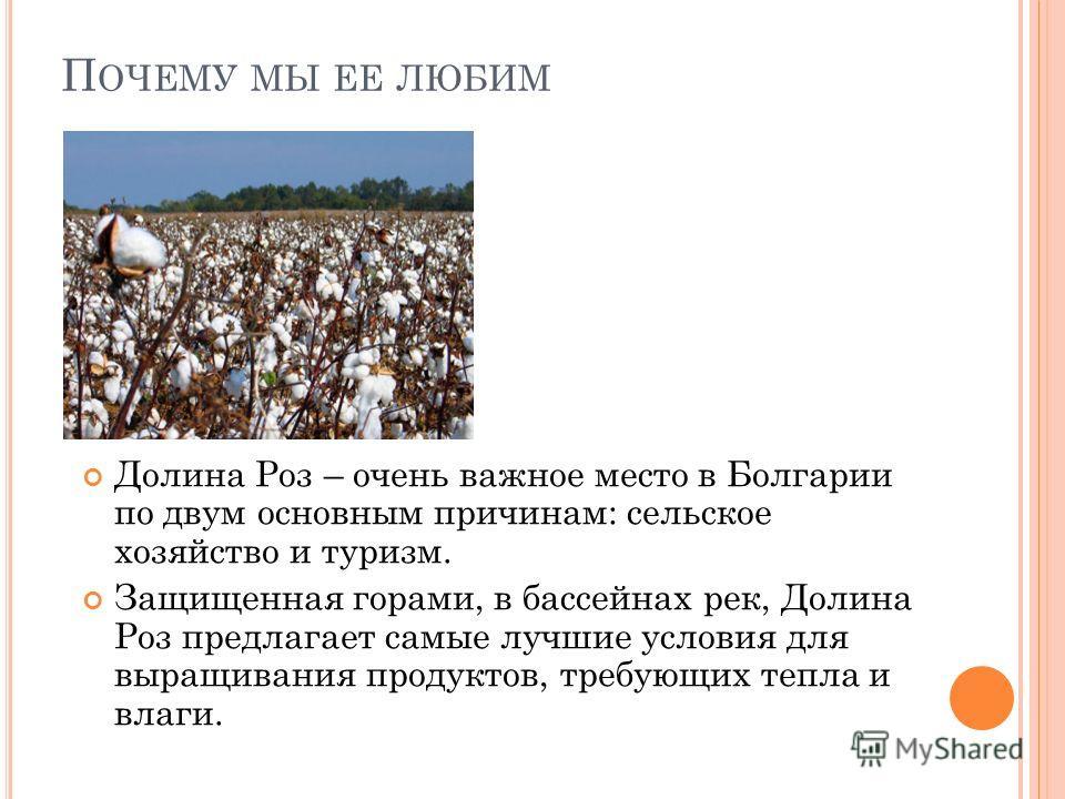 П ОЧЕМУ МЫ ЕЕ ЛЮБИМ Долина Роз – очень важное место в Болгарии по двум основным причинам: сельское хозяйство и туризм. Защищенная горами, в бассейнах рек, Долина Роз предлагает самые лучшие условия для выращивания продуктов, требующих тепла и влаги.