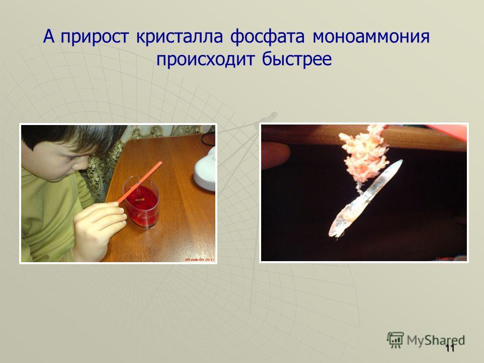 А прирост кристалла фосфата моноаммония происходит быстрее 11
