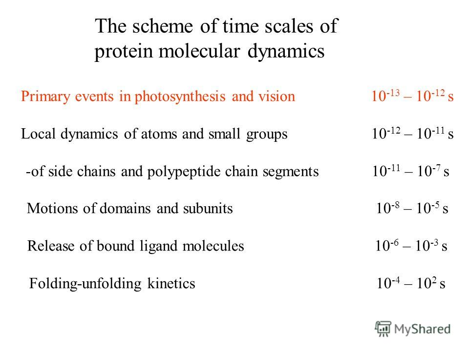 The scheme of time scales of protein molecular dynamics Primary events in photosynthesis and vision 10 -13 – 10 -12 s Local dynamics of atoms and small groups 10 -12 – 10 -11 s -of side chains and polypeptide chain segments 10 -11 – 10 -7 s Motions o