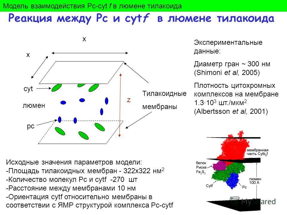 Реакция между Pc и cytf в люмене тилакоида z x x Тилакоидные мембраны люмен pc cyt Экспериментальные данные: Диаметр гран ~ 300 нм (Shimoni et al, 2005) Плотность цитохромных комплексов на мембране 1.3·10 3 шт./мкм 2 (Albertsson et al, 2001) Исходные
