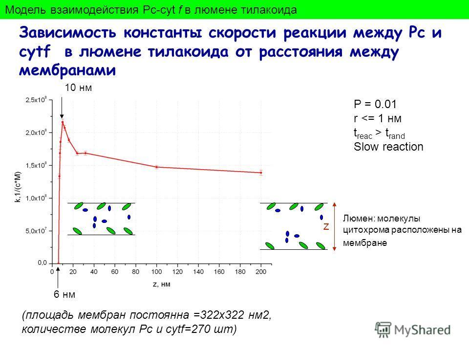 Зависимость константы скорости реакции между Pc и cytf в люмене тилакоида от расстояния между мембранами (площадь мембран постоянна =322х322 нм2, количестве молекул Pc и cytf=270 шт) 10 нм Люмен: молекулы цитохрома расположены на мембране 6 нм Модель
