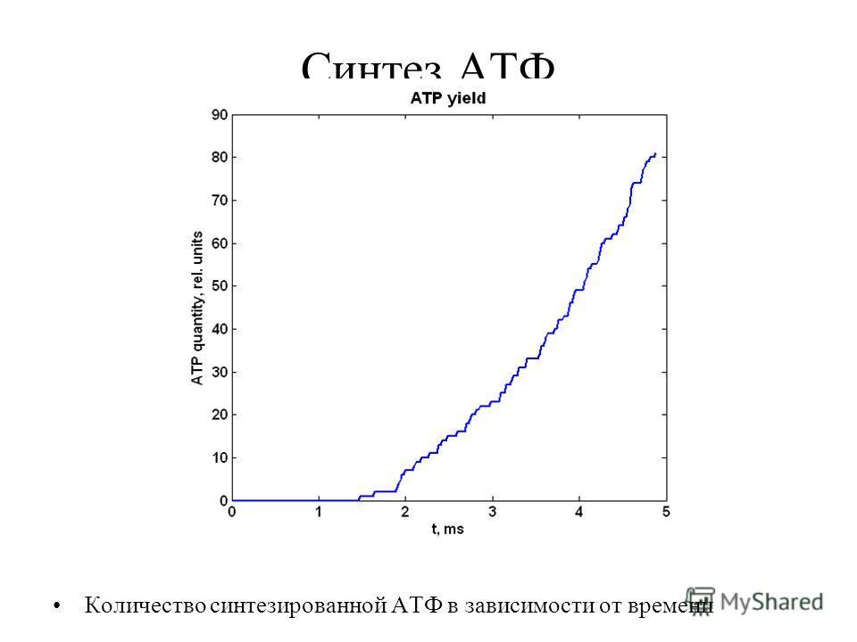 Синтез АТФ Количество синтезированной АТФ в зависимости от времени