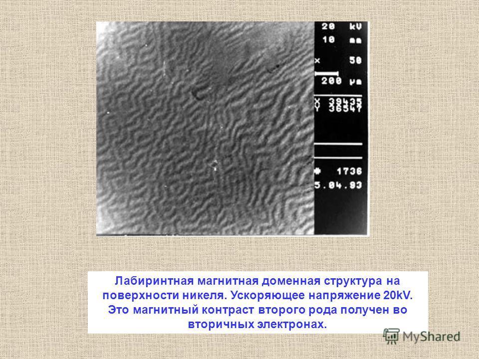 Лабиринтная магнитная доменная структура на поверхности никеля. Ускоряющее напряжение 20kV. Это магнитный контраст второго рода получен во вторичных электронах.