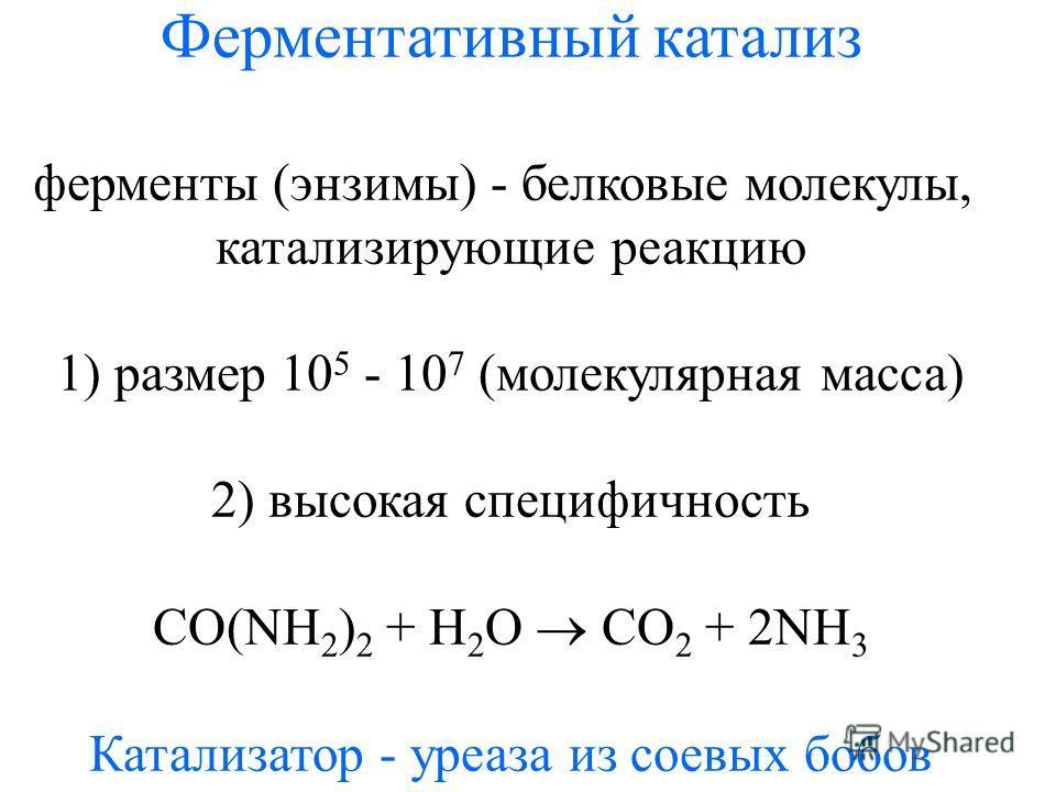 Ферментативный катализ ферменты (энзимы) - белковые молекулы, катализирующие реакцию 1) размер 10 5 - 10 7 (молекулярная масса) 2) высокая специфичность CO(NH 2 ) 2 + H 2 O CO 2 + 2NH 3 Катализатор - уреаза из соевых бобов