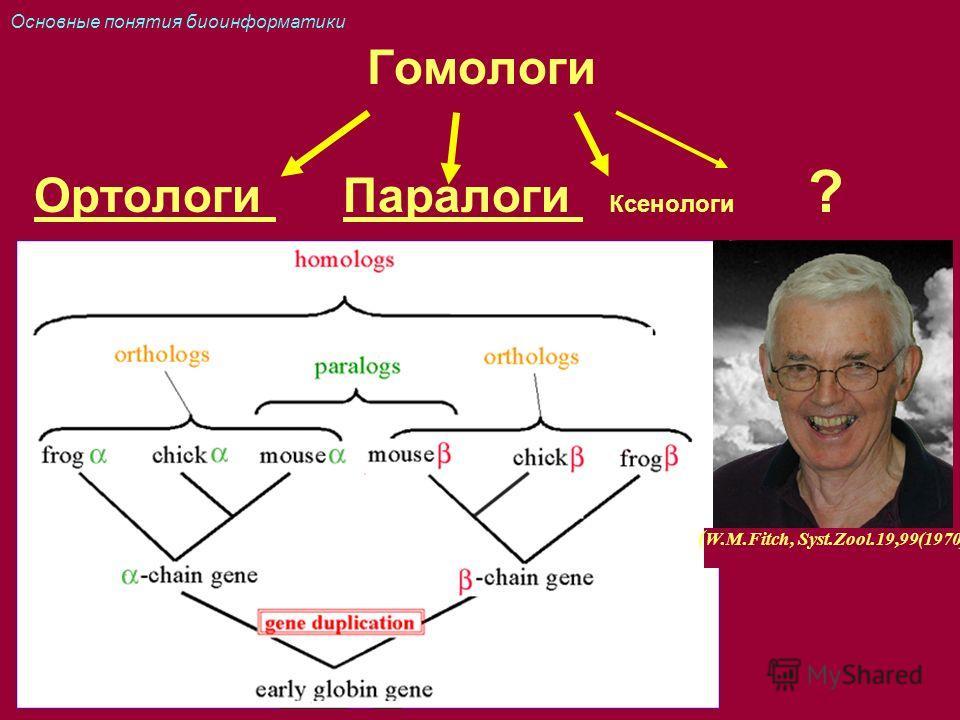 Гомологи Ортологи Паралоги Ксенологи ? ( W.M.Fitch, Syst.Zool.19,99(1970) Основные понятия биоинформатики