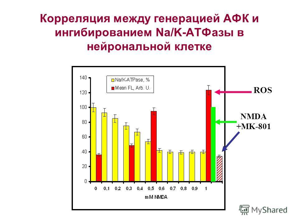 Корреляция между генерацией АФК и ингибированием Na/K-ATФазы в нейрональной клетке NMDA +MK-801 ROS