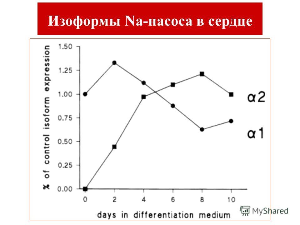 Изоформы Na-насоса в сердце