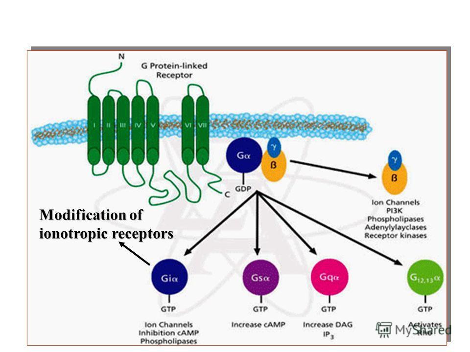 Функции метаботропных рецепторов Modification of ionotropic receptors