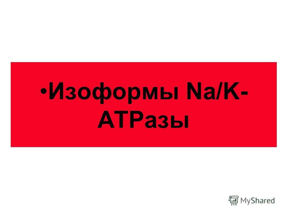Изоформы Na/K- АТРазы
