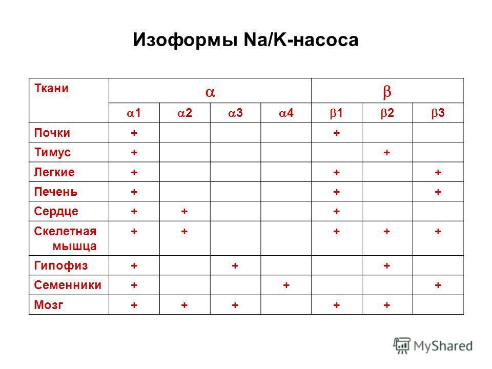 Изоформы Na/K-насоса Ткани 1 2 3 4 1 2 3 Почки++ Тимус++ Легкие+++ Печень+++ Сердце+++ Скелетная мышца +++++ Гипофиз+++ Семенники+++ Мозг+++++