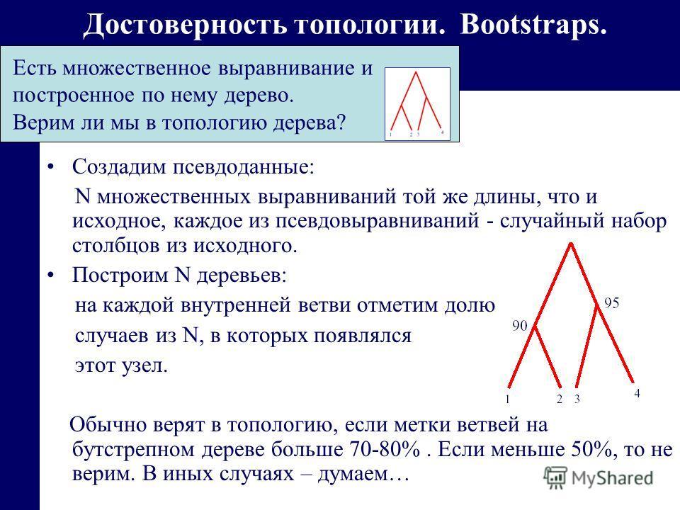 Достоверность топологии. Bootstraps. Создадим псевдоданные: N множественных выравниваний той же длины, что и исходное, каждое из псевдовыравниваний - случайный набор столбцов из исходного. Построим N деревьев: на каждой внутренней ветви отметим долю