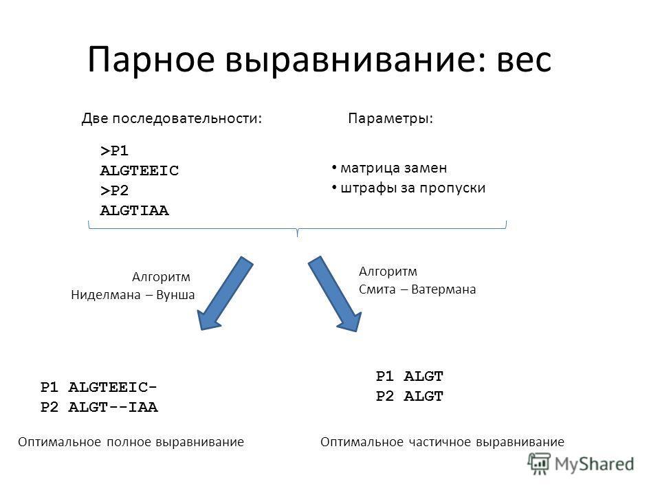Парное выравнивание: вес >P1 ALGTEEIC >P2 ALGTIAA Две последовательности:Параметры: матрица замен штрафы за пропуски Алгоритм Ниделмана – Вунша Алгоритм Смита – Ватермана P1 ALGTEEIC- P2 ALGT--IAA P1 ALGT P2 ALGT Оптимальное полное выравниваниеОптима