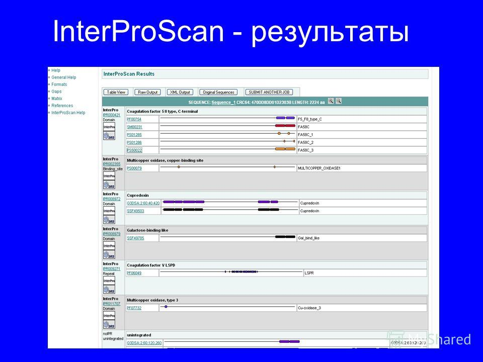 InterProScan - результаты