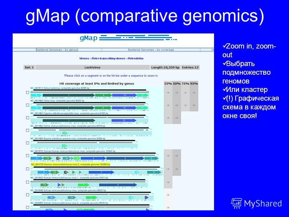 gMap (comparative genomics) Zoom in, zoom- out Выбрать подмножество геномов Или кластер (!) Графическая схема в каждом окне своя!