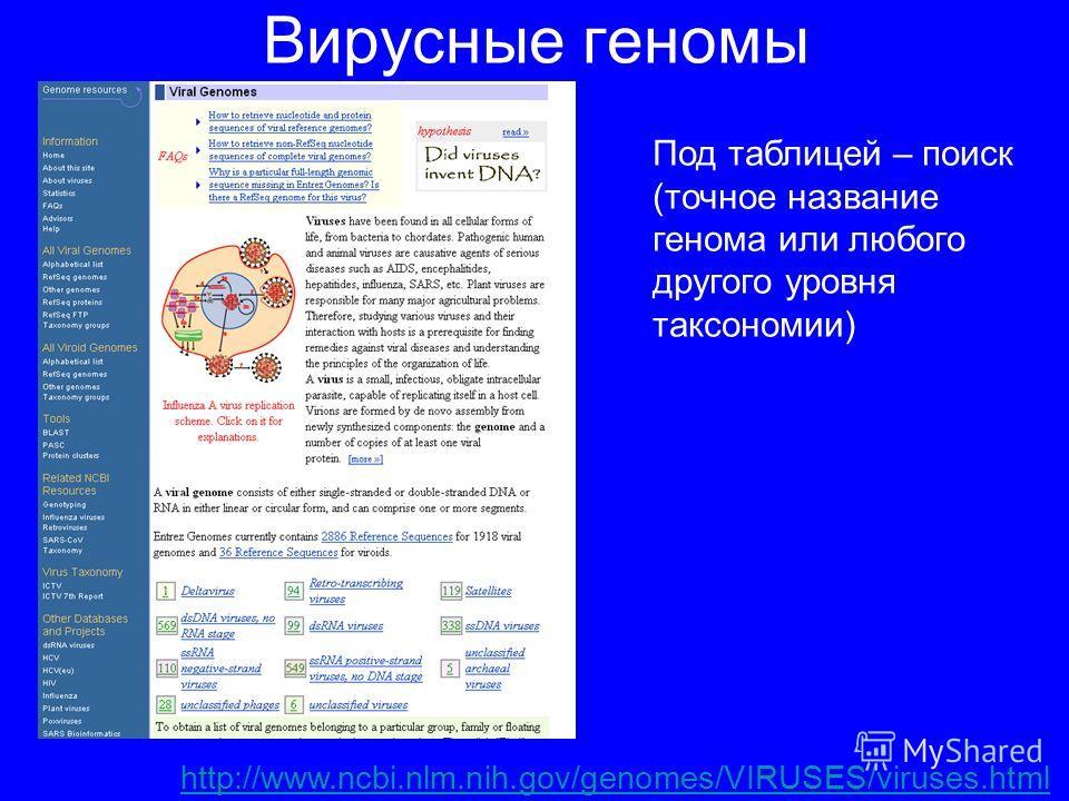 Вирусные геномы http://www.ncbi.nlm.nih.gov/genomes/VIRUSES/viruses.html Под таблицей – поиск (точное название генома или любого другого уровня таксономии)