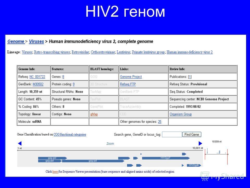 HIV2 геном