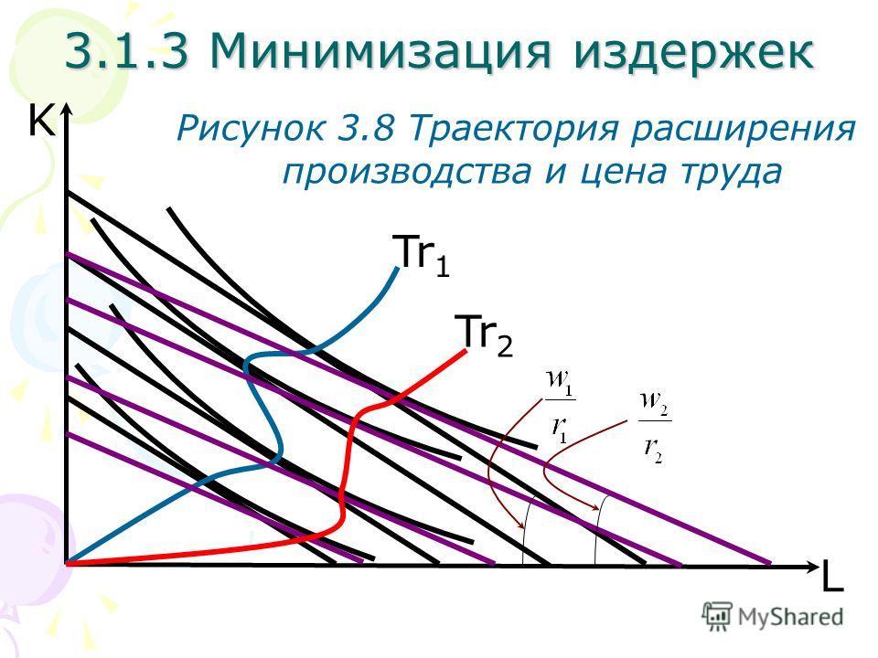 L K Рисунок 3.8 Траектория расширения производства и цена труда Tr 1 Tr 2 3.1.3 Минимизация издержек
