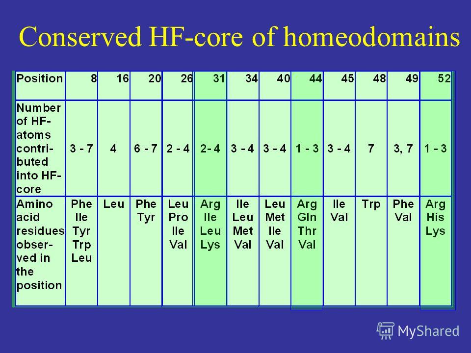 Conserved HF-core of homeodomains