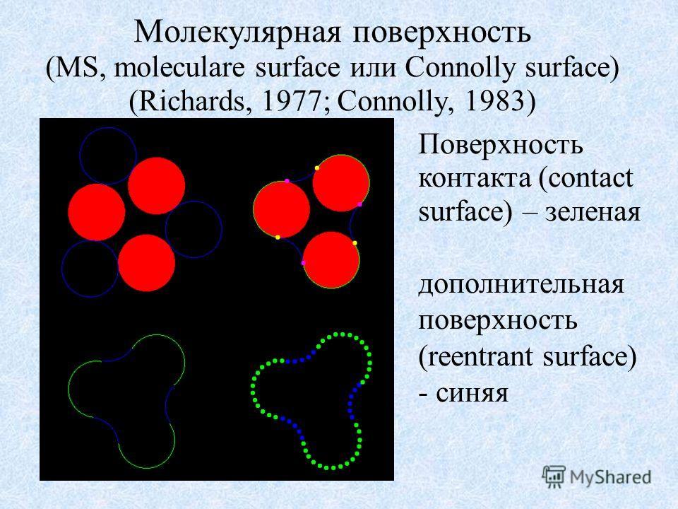 Молекулярная поверхность (MS, moleculare surface или Connolly surface) (Richards, 1977; Connolly, 1983) Поверхность контакта (contact surface) – зеленая дополнительная поверхность (reentrant surface) - синяя