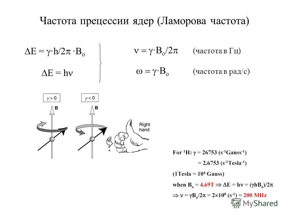 Частота прецессии ядер (Ламорова частота) E = h E = ·h/2 ·B o ·B o /2 ·B o (частота в Гц) (частота в рад/с)