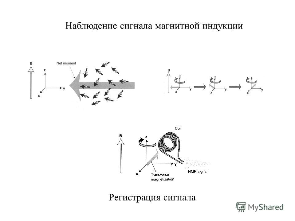 Регистрация сигнала Наблюдение сигнала магнитной индукции