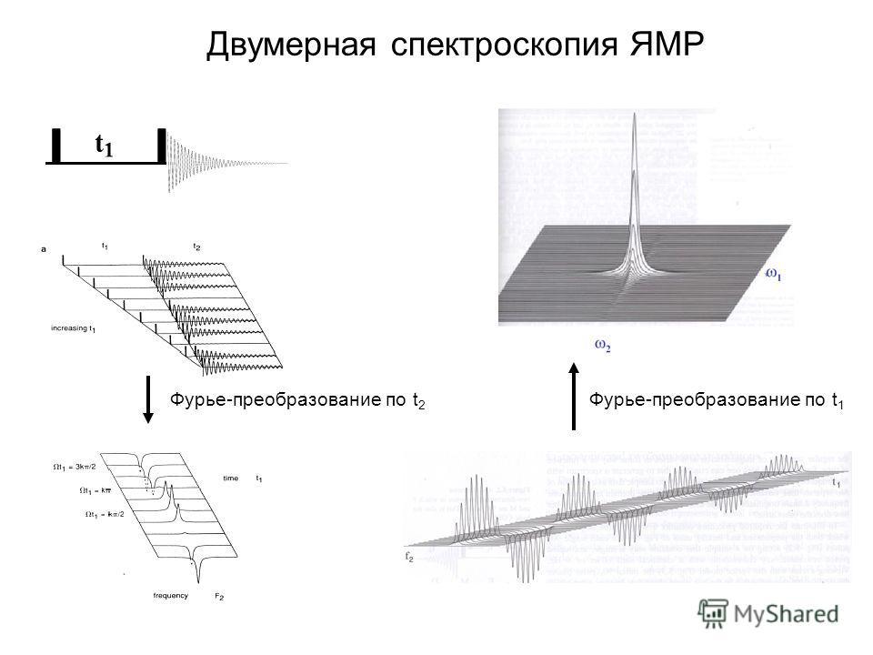 Двумерная спектроскопия ЯМР Фурье-преобразование по t 2 Фурье-преобразование по t 1