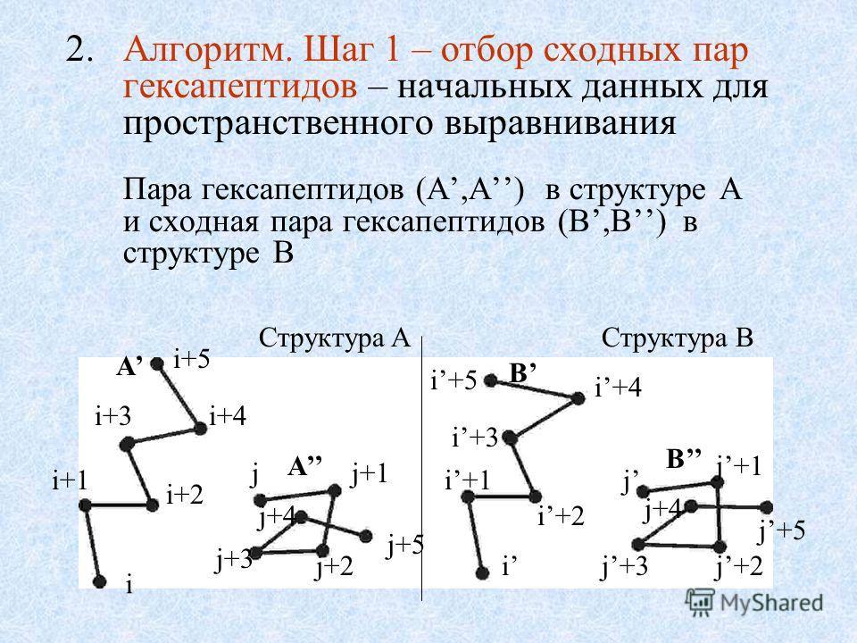 2.Алгоритм. Шаг 1 – отбор сходных пар гексапептидов – начальных данных для пространственного выравнивания Пара гексапептидов (A,A) в структуре A и сходная пара гексапептидов (B,B) в структуре B B A i i+1 i+2 i+3i+4 i+5 j j+2 j+1 j+5 j+4 j+3 i i+1 i+4