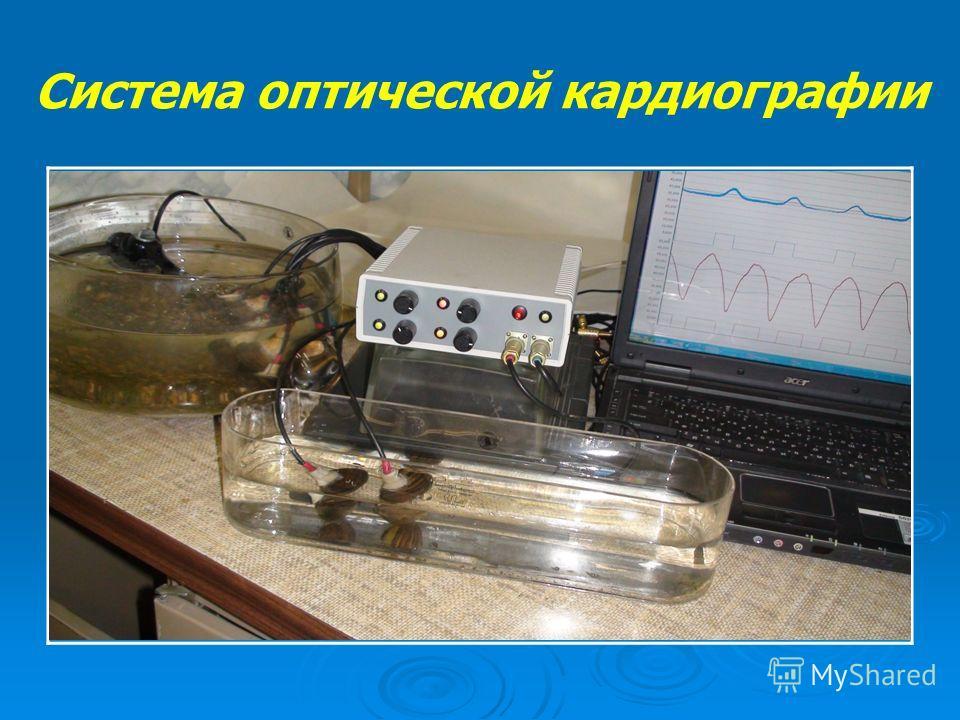 Система оптической кардиографии