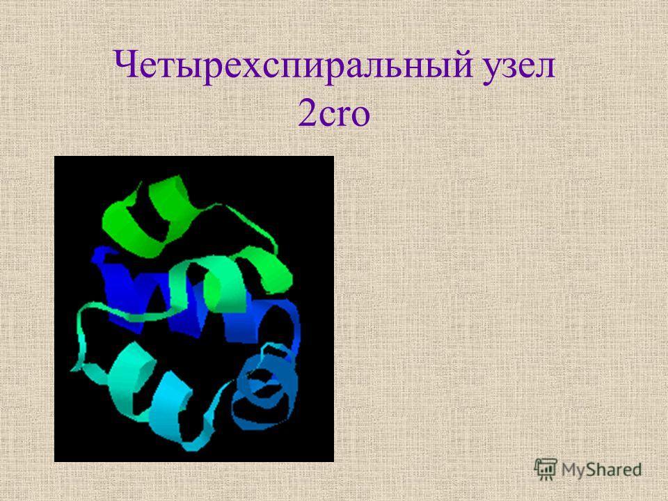 Четырехспиральный узел 2cro
