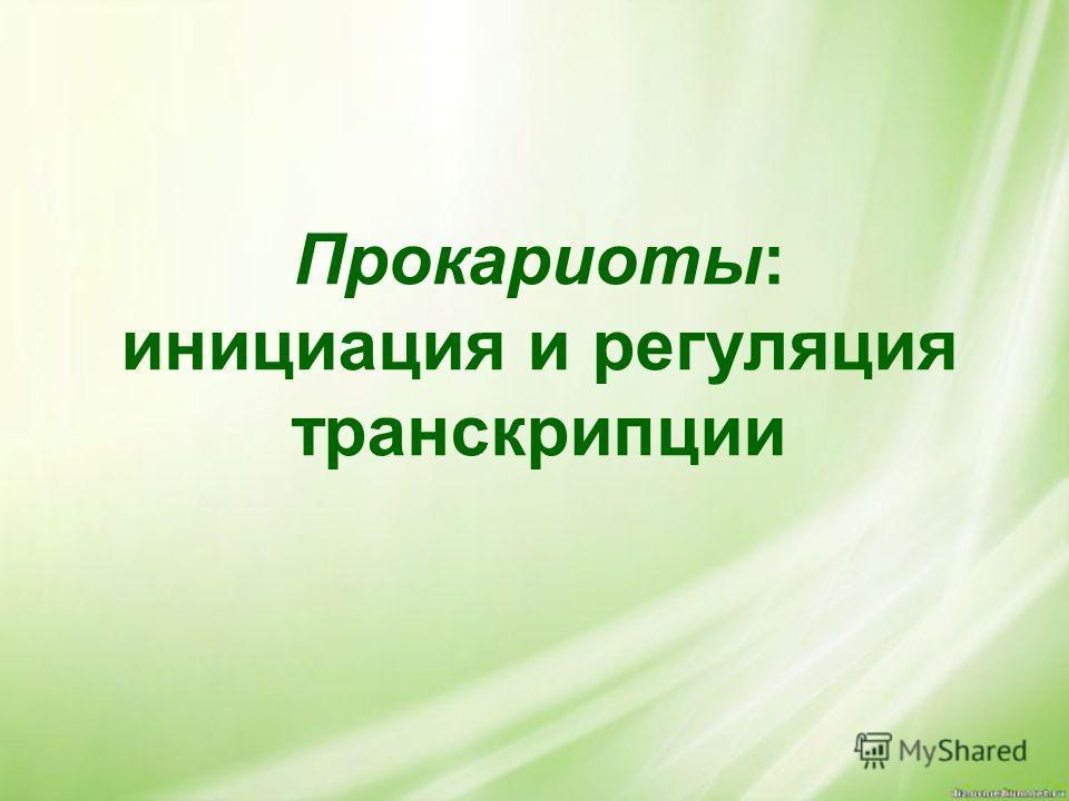 Прокариоты: инициация и регуляция транскрипции