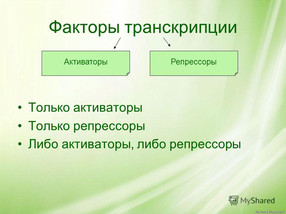 Факторы транскрипции Только активаторы Только репрессоры Либо активаторы, либо репрессоры АктиваторыРепрессоры