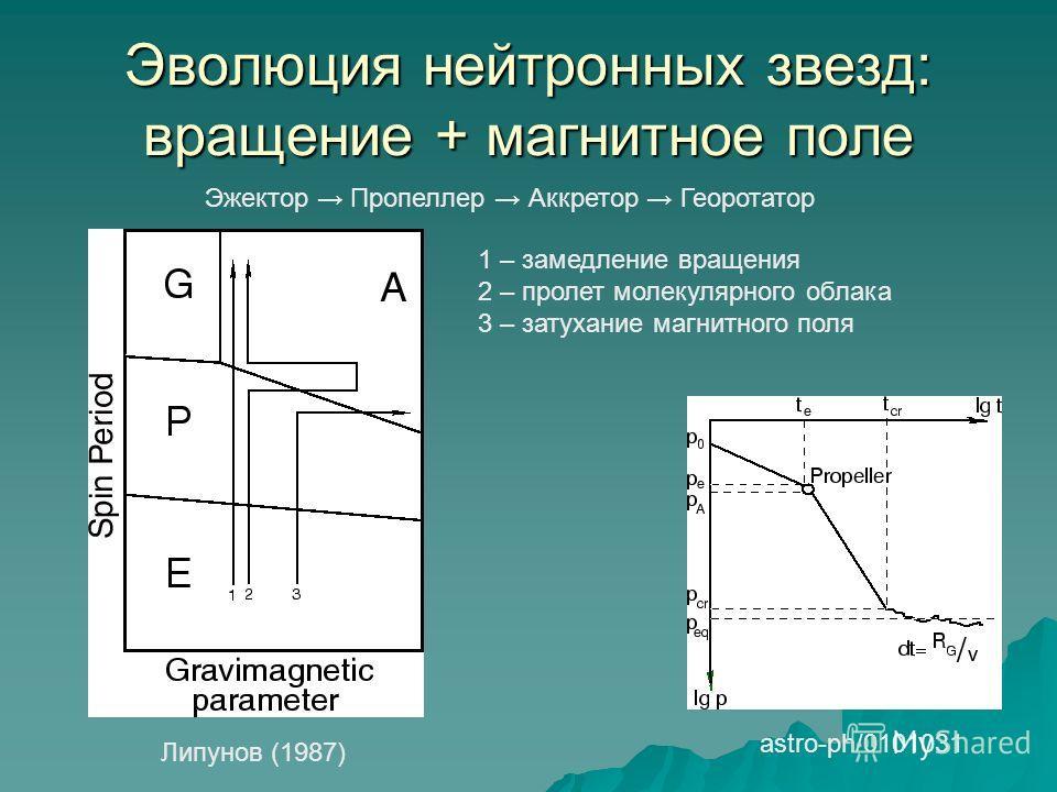 Эволюция нейтронных звезд: вращение + магнитное поле Эжектор Пропеллер Аккретор Георотатор Липунов (1987) astro-ph/0101031 1 – замедление вращения 2 – пролет молекулярного облака 3 – затухание магнитного поля