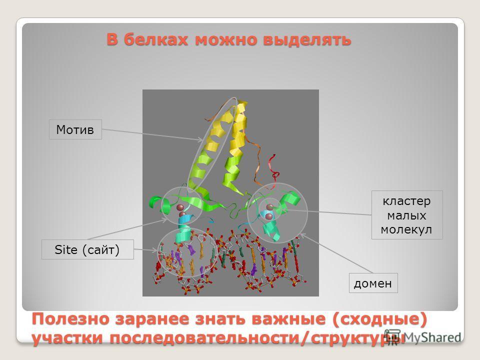 Полезно заранее знать важные (сходные) участки последовательности/структуры Site (сайт) Мотив кластер малых молекул домен В белках можно выделять